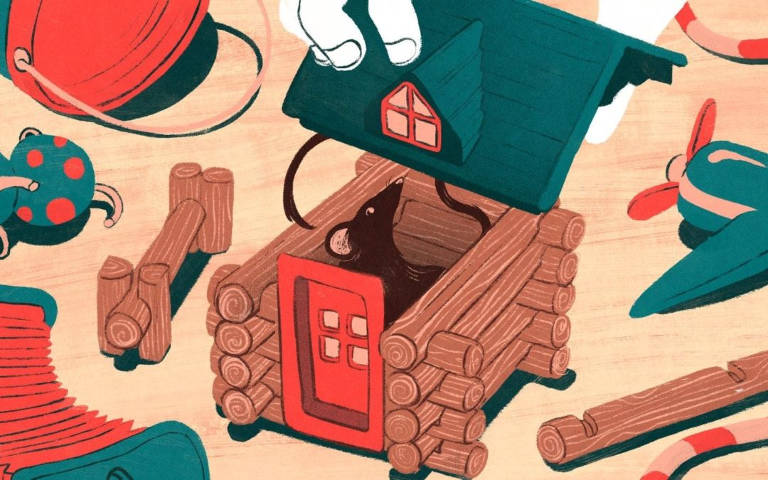 There's a Mouse in Your House: Now What?