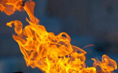 How the Risk of Fire Increases if You Have Mice in Your Home